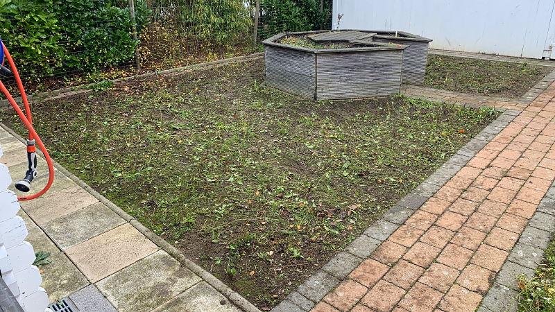 Blumenwiese - Nach der Maad